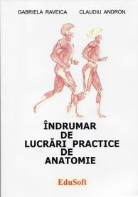 indrumar_anatomie
