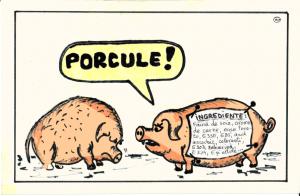 Porcule2