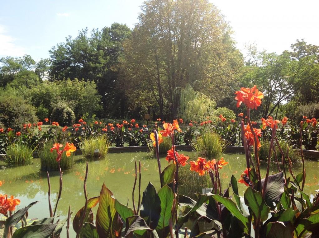 Grădina Botanică din Iaşi