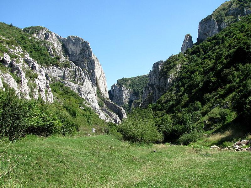 Cheile Turzii vazute dinspre comuna Petreștii de Jos. (Ana Maria Catalina, Wikipedia)