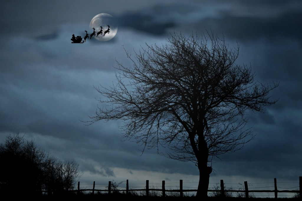 santa-with-sleigh-1032559_1920