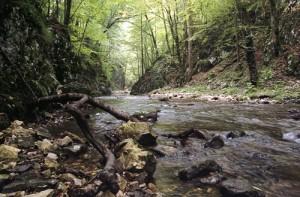 Caras_river