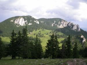 Parcul Național Cheile Bicazului - Hșmaș