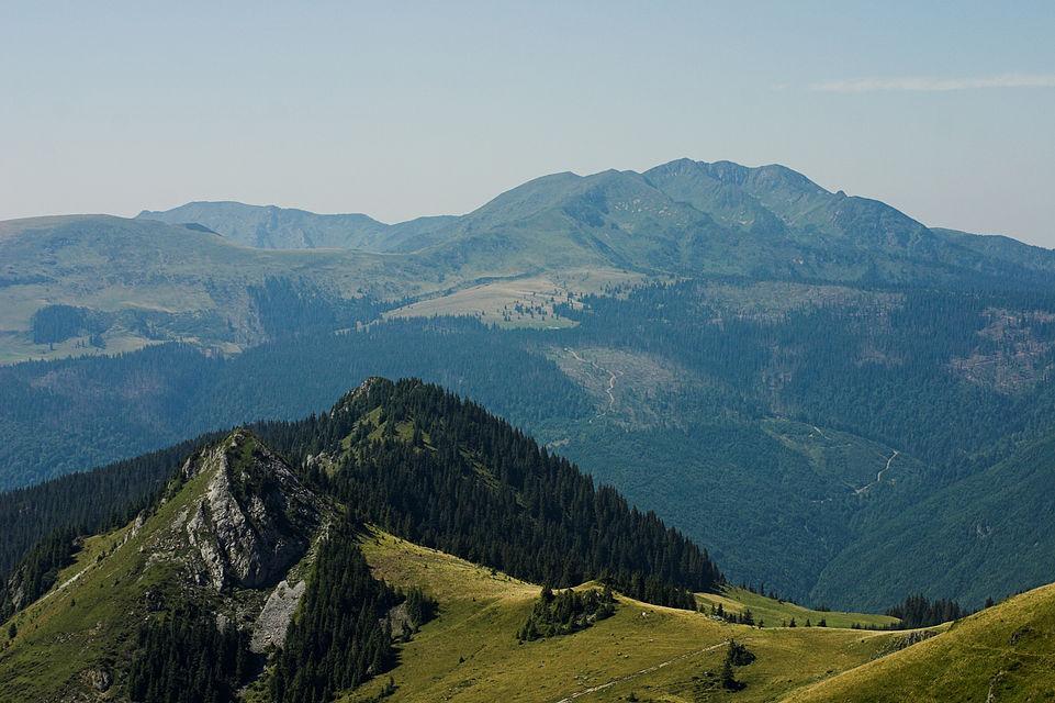 Parcul Natural Munții Maramureșului