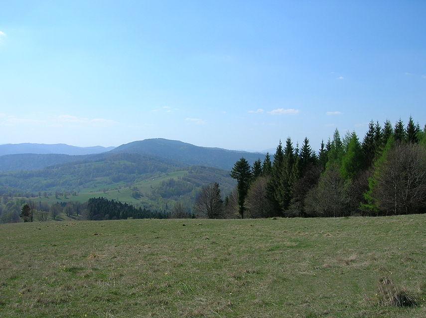 Parcul Natural Vânători-Neamț