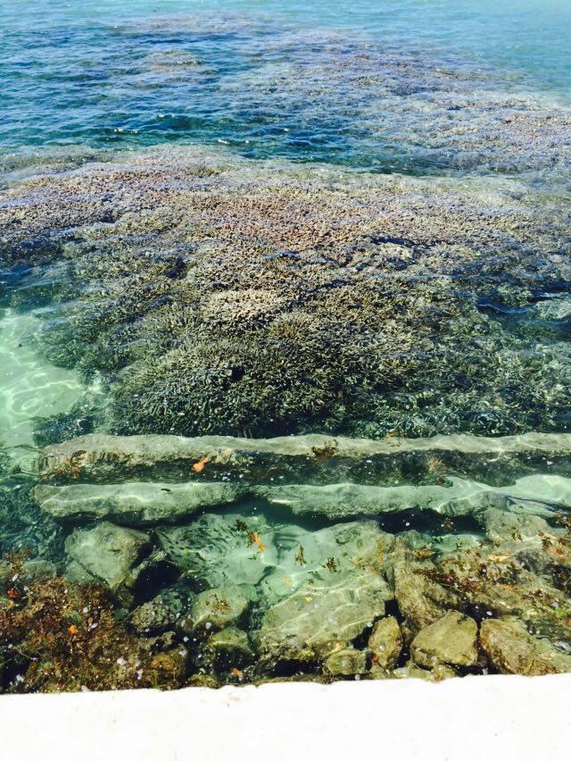ocean_insulele_seychelles
