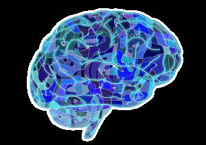 Științe Cognitive