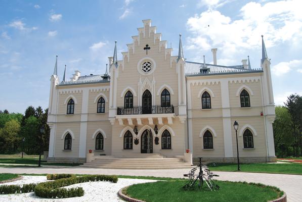 palatul Cuza ruginoasa