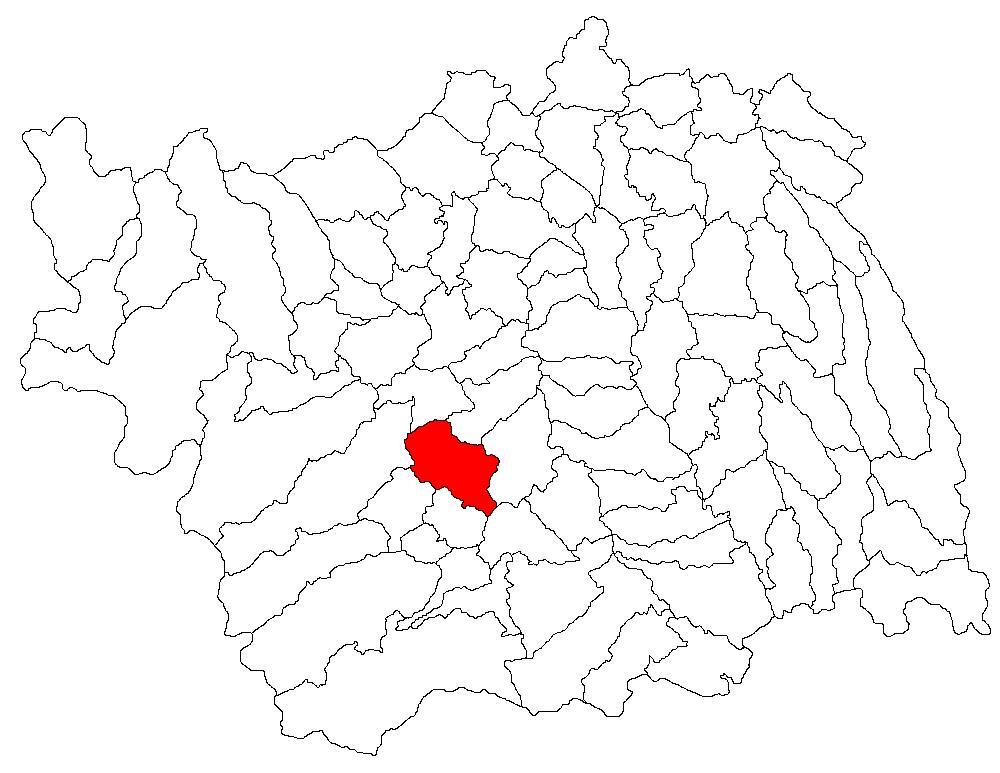 Localizarea comunei Bârsănești în cadrul județului Bacău